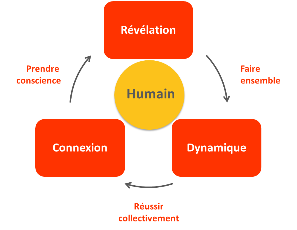 Dynamique_centree_humain_youmanlink